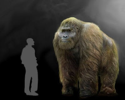 The Yeti From 1 Million Years Ago
