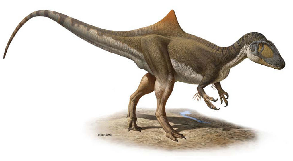 Spain's Most Complete Dinosaur