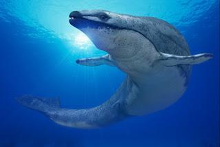 Basilosaurus: The Giant Snake.