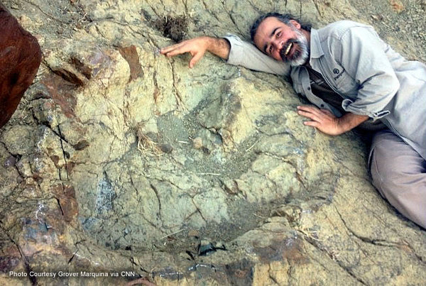 The Largest Footprint of a Carnivorous Dinosaur