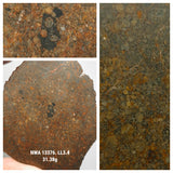 Northwest Africa 13376 LL3.4 Unequilibrated chondrite. Pat Order