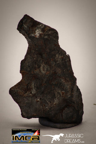"22412 - Collector Grade 14.2g ""Agoudal"" Imilchil Iron IIAB Meteorite"