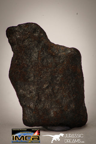"22413 - Collector Grade 16.8g ""Agoudal"" Imilchil Iron IIAB Meteorite"