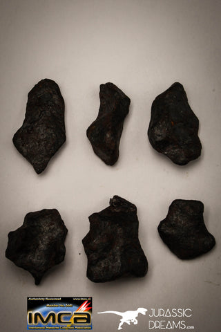 "22417 - Collection of ""Agoudal"" Imilchil Iron IIAB Meteorites 61.7g"
