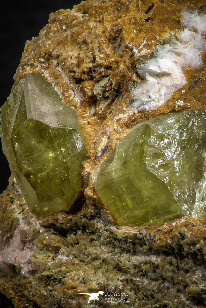 07621 -  Lustrous Yellow Green Apatite Crystals on Brecciated Matrix - Imilchil (Morocco)