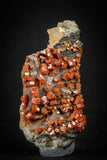 88134 -  Beautiful Red Vanadinite Crystals on Natural Manganese-Iron Oxide Matrix from Morocco