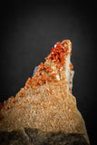 88133 -  Beautiful Red Vanadinite Crystals on Natural Manganese-Iron Oxide Matrix from Morocco