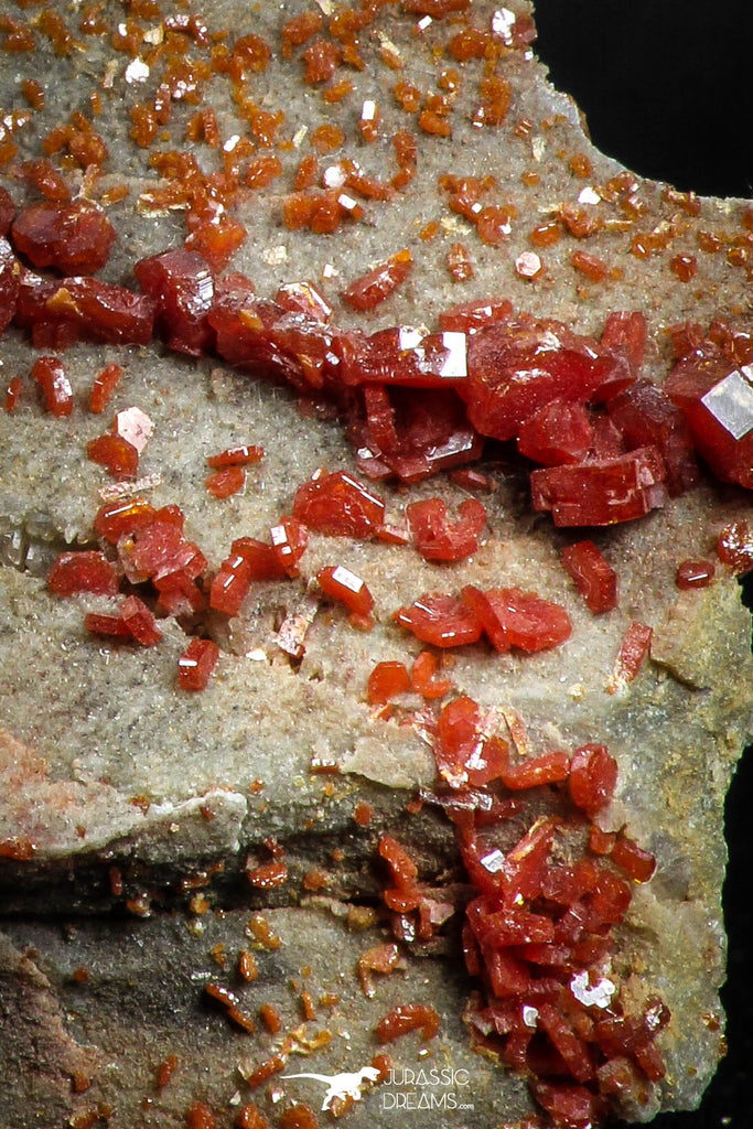 05085 - Beautiful Red Vanadinite Crystals Cluster from Mibladen Mining District, Midelt Province, Morocco