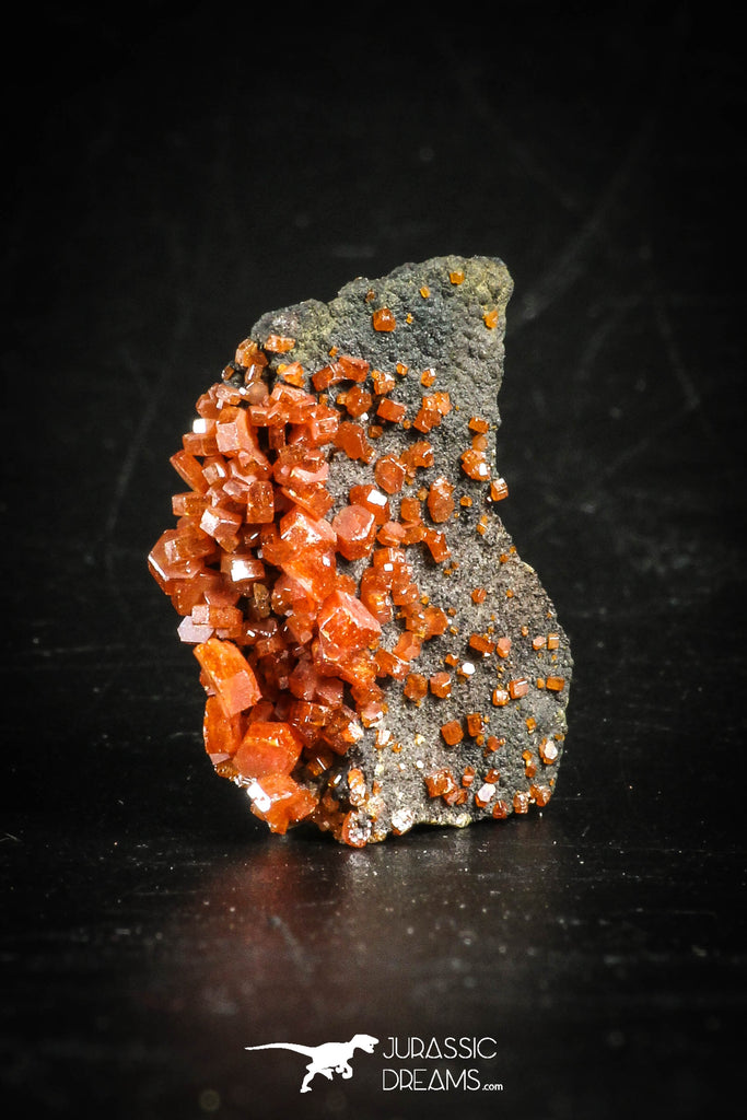 88509 -  Beautiful Red Vanadinite Crystals on Natural Manganese-Iron Oxide Matrix from Morocco
