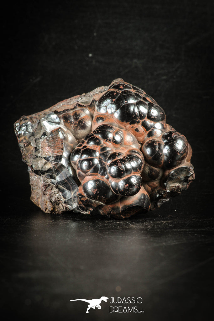 88520 - Dark Gray Bubbly Botryoidal 2.63 Inch Goethite from South Morocco