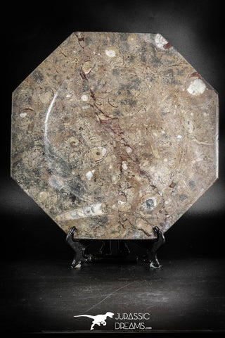 88887 - Top Beautiful Decorative Polished Octagon Shaped Plate with Devonian Fossils