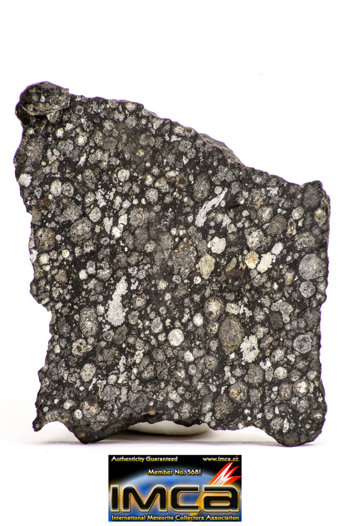 08852 - Top Rare Polished Thin Section NWA Carbonaceous Chondrite CV3 Type  5.403g