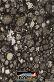 08855 - Top Rare Polished Thin Section NWA Carbonaceous Chondrite CV3 Type - 3.355 g