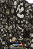 08858 - Top Rare Polished Thin Section NWA Carbonaceous Chondrite CV3 Type - 3.688 g