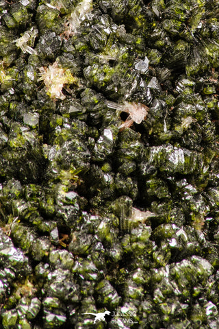 07811 - Slender Grass Green Epidote Crystals on Matrix Imilchil Mine Morocco