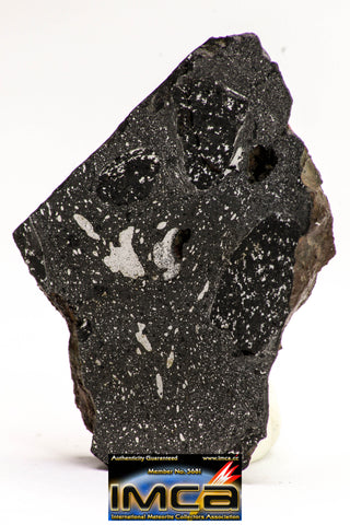 08927 -Top Rare NWA IMB Impact Melt Breccia Chondrite Meteorite Polished Section 21.8 g