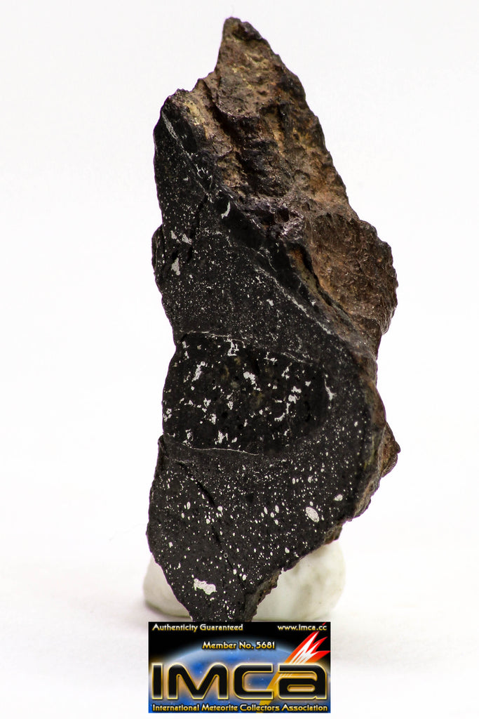 08931 -Top Rare NWA IMB Impact Melt Breccia Chondrite Meteorite Polished Section 2.24 g