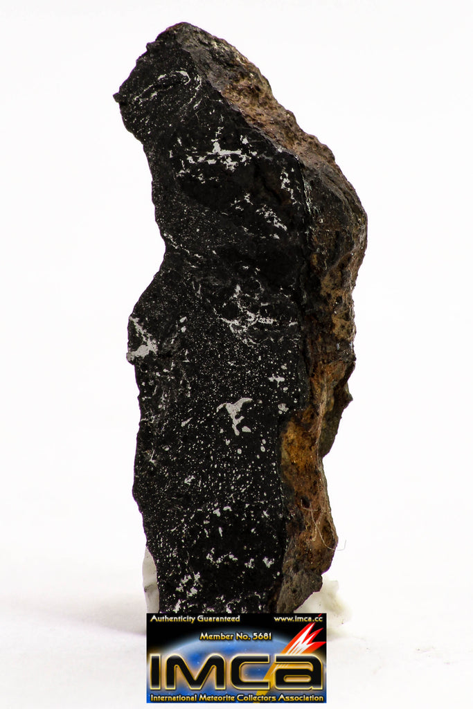 08933 -Top Rare NWA IMB Impact Melt Breccia Chondrite Meteorite Polished Section 1.64 g