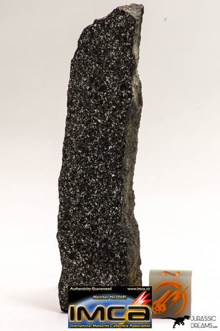 08937 - Top Rare NWA Polished Section of Enstatite Chondrite EL6 26.4 g