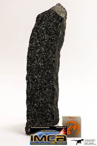 08938 - Top Rare NWA Polished Section of Enstatite Chondrite EL6 29.2 g