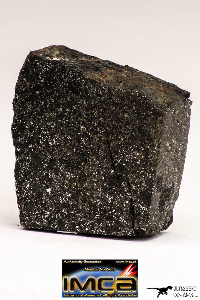 08946 - Top Rare NWA Polished Section of Enstatite Chondrite EL6 15.4 g