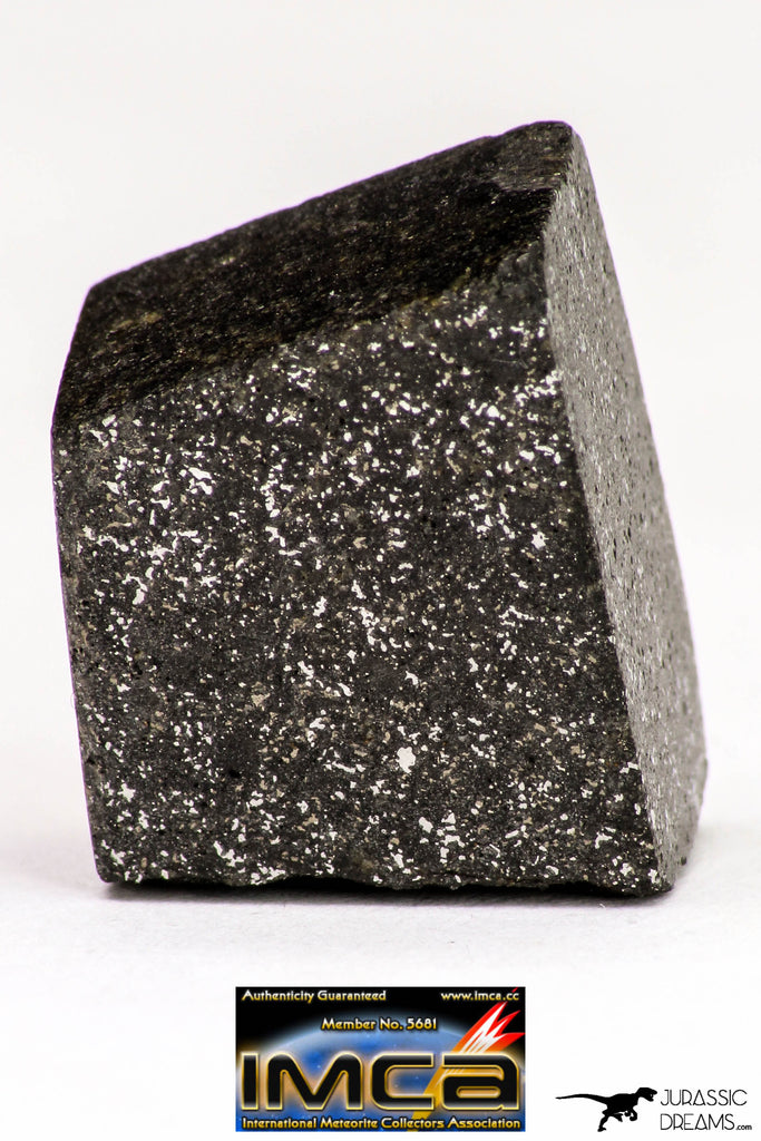 08948 - Top Rare NWA Polished Section of Enstatite Chondrite EL6 5.4 g