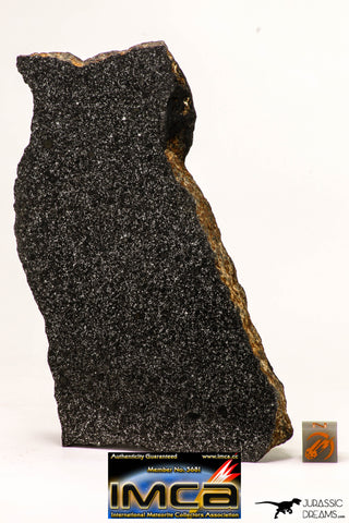08950 - Top Rare Museum Grade NWA Polished Section of Enstatite Chondrite EL6 340.8 g