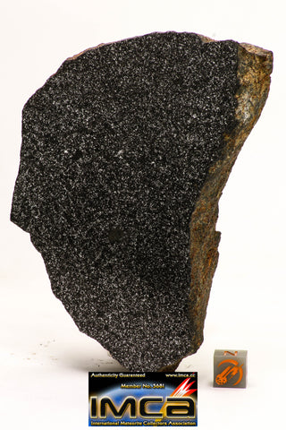 08954 -Top Rare Museum Grade NWA Polished Section of Enstatite Chondrite EL6  388.6 g with Fusion Crust
