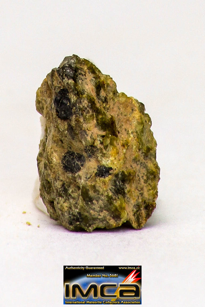 08969 - Fragment 0.158 g NWA Unclassified Diogenite Achondrite Meteorite