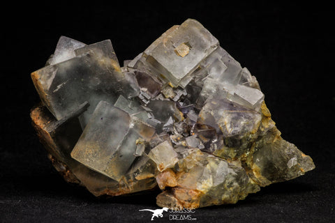 20855 - Top Pale Blue Fluorite Crystals on Matrix Hameda Fluorite Mine South Morocco