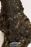 08983 - Top Rare 0.491 g NWA Unclassified Ureilite Achondrite Meteorite Polished Section