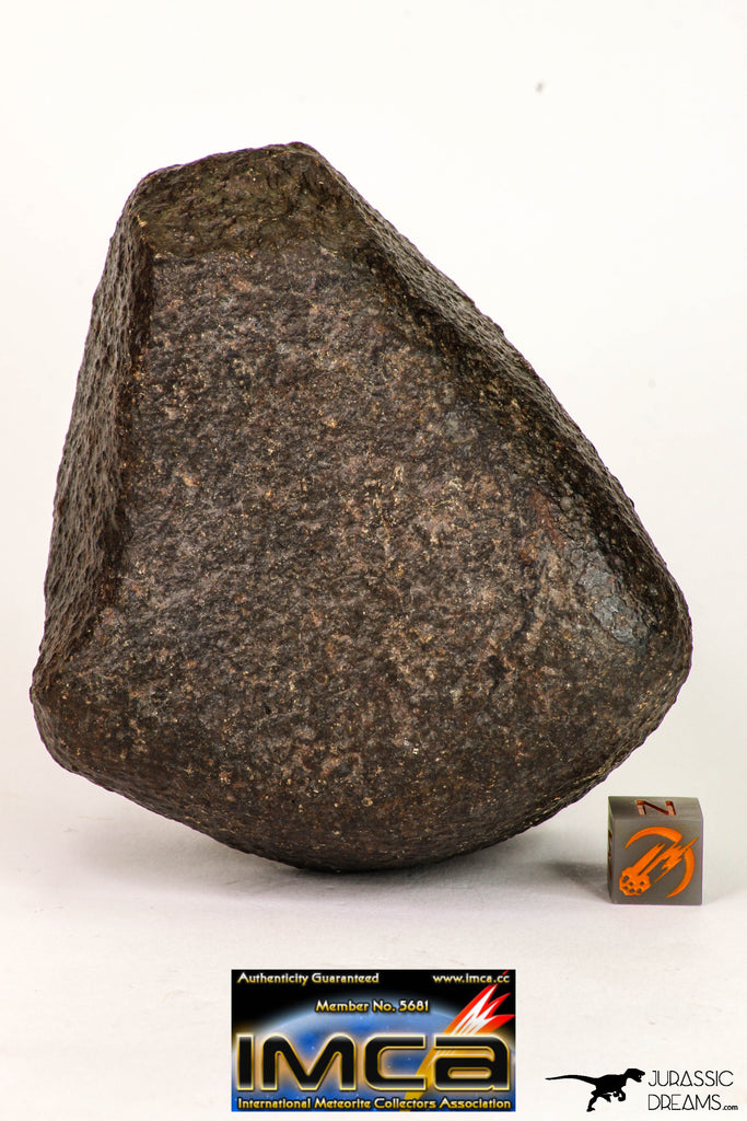 08998 - Complete NWA Unclassified Ordinary Chondrite Meteorite 554.1 g