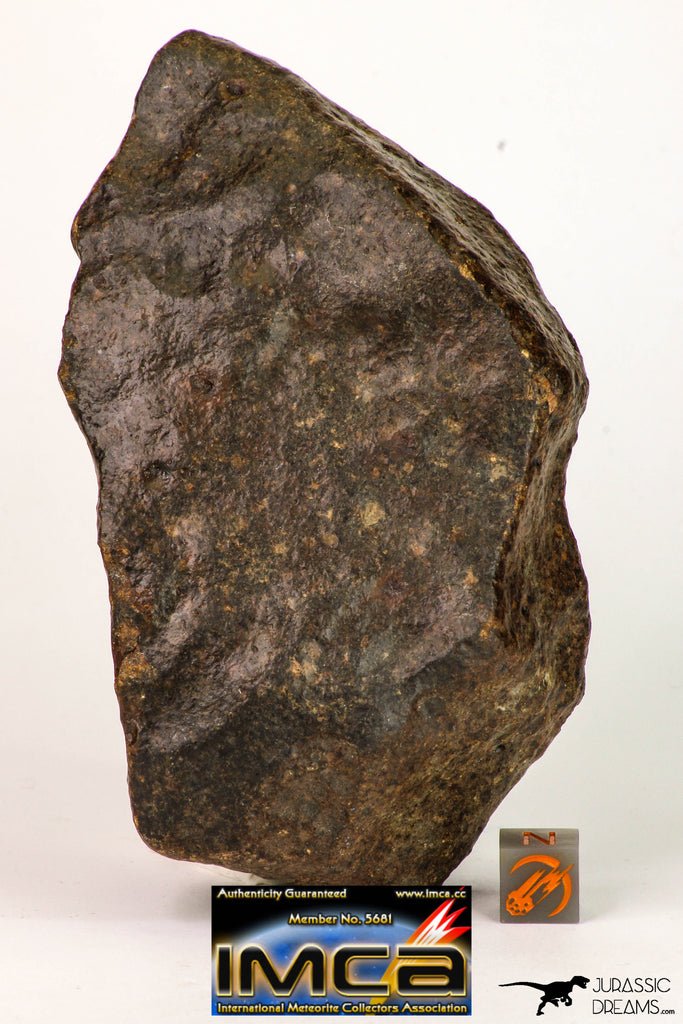 09002 - Almost Complete NWA Unclassified Ordinary Chondrite Meteorite 538.4 g