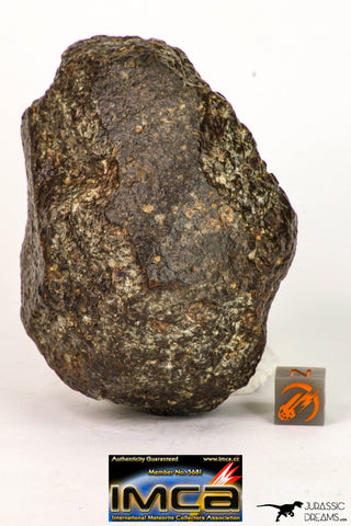 09004 - Almost Complete NWA Unclassified Ordinary Chondrite Meteorite 368.1 g