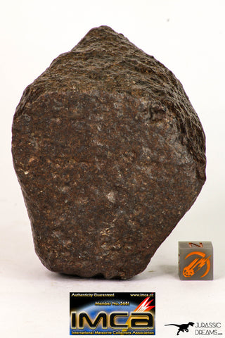 09007 - Almost Complete NWA Unclassified Ordinary Chondrite Meteorite 375.6 g