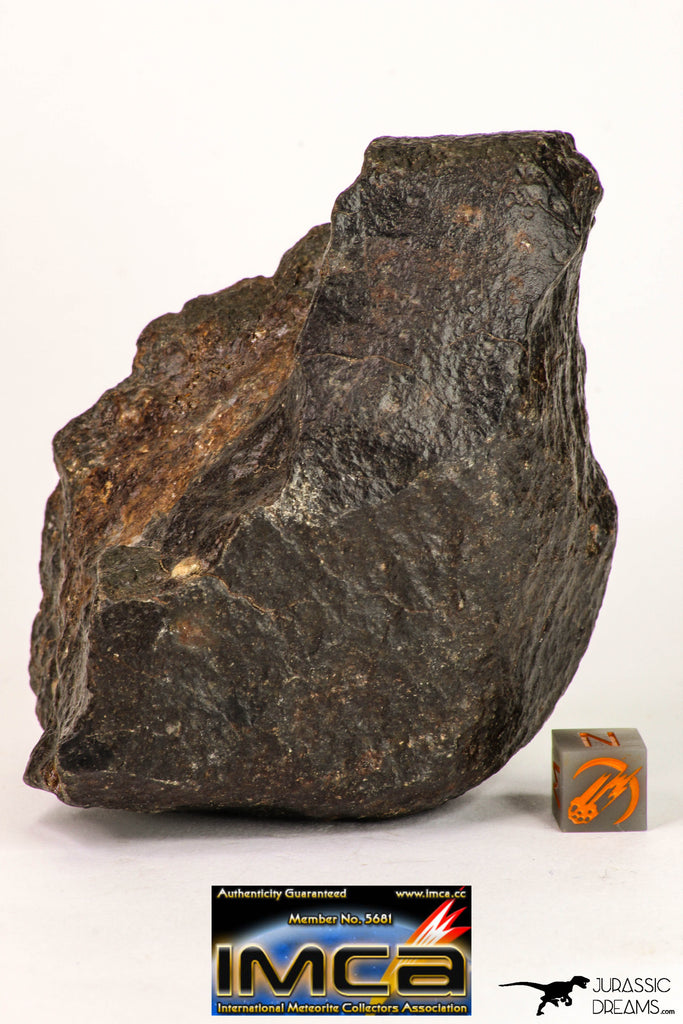 09008 - Almost Complete NWA Unclassified Ordinary Chondrite Meteorite 457.2 g