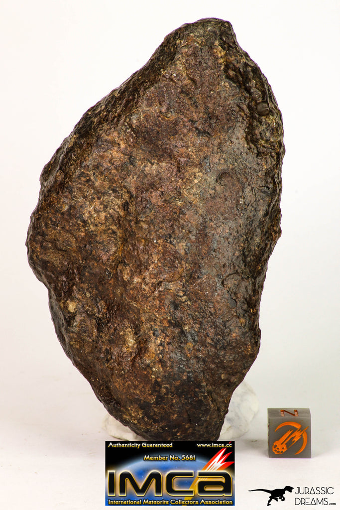 09009 - Almost Complete NWA Unclassified Ordinary Chondrite Meteorite 467.1 g