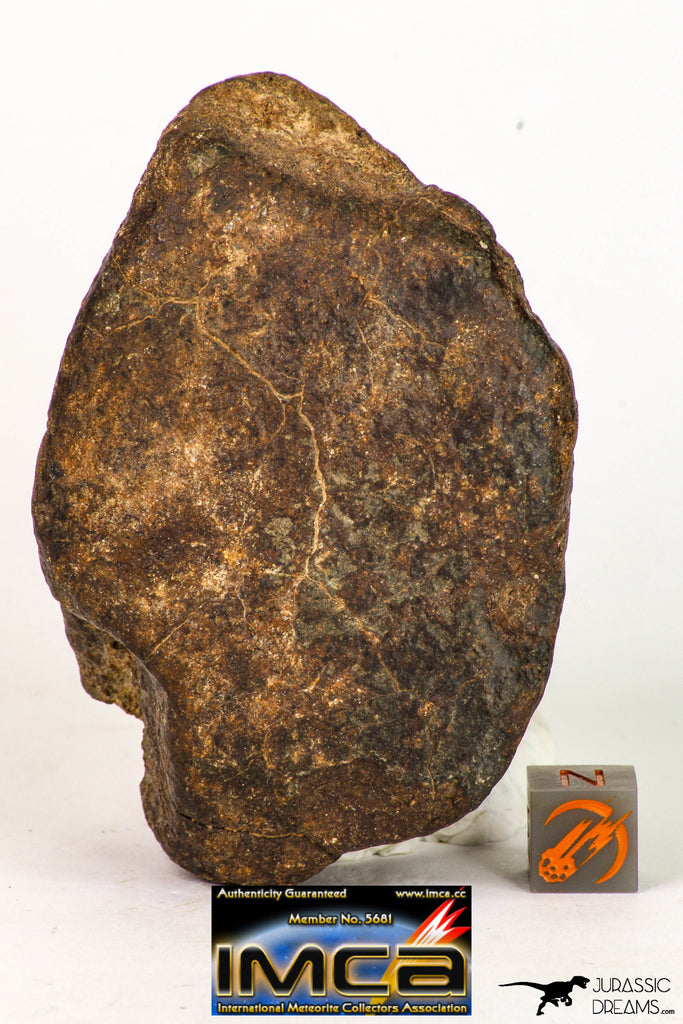 09010 - Almost Complete NWA Unclassified Ordinary Chondrite Meteorite 231.3 g
