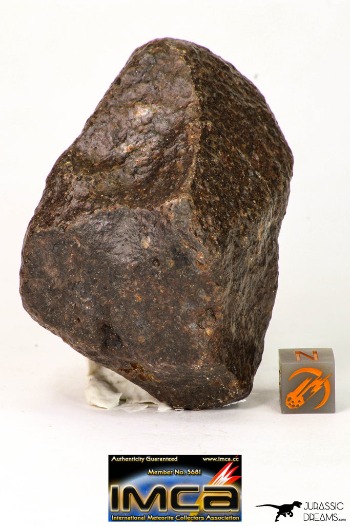 09012 - Almost Complete NWA Unclassified Ordinary Chondrite Meteorite 167 g