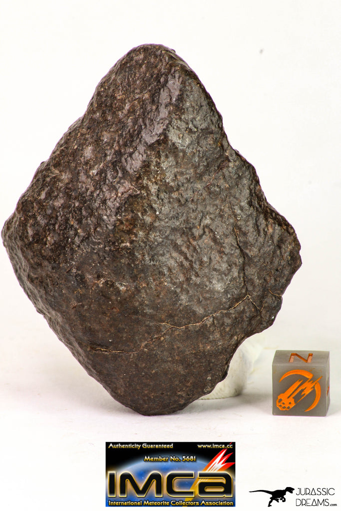 09014 - Almost Complete NWA Unclassified Ordinary Chondrite Meteorite 203.7 g