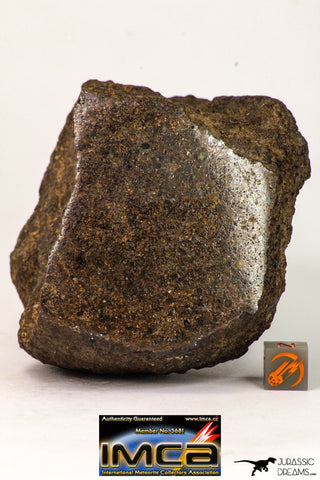 09023 - Complete Specimen With Polished Endcut NWA Unclassified Ordinary Chondrite H3 Meteorite 592.7 g