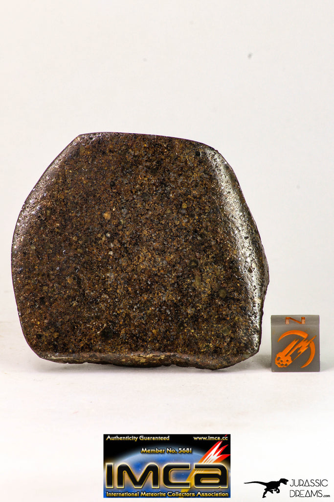 09024 - Polished Endcut NWA Unclassified Ordinary Chondrite H3 Meteorite 63.8 g