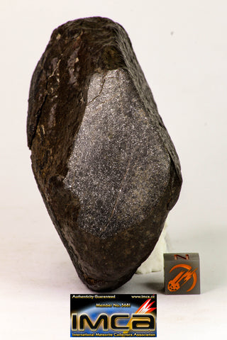 09025 - Complete NWA H6 Type Ordinary Chondrite Meteorite with Fusion Crust & Polished Endcut 430.1g