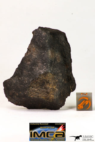 09029 - Partial Complete NWA Unclassified Ordinary Chondrite Meteorite 43.6 g With Fusion Crust