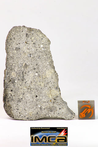 09034 - Top Rare NWA Howardite Achondrite Meteorite Polished Section 37.8g