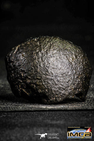 22388 - Top Rare 35.1g NWA Unclassified Chondrite H6 Type Melt Breccia Meteorite ORIENTED