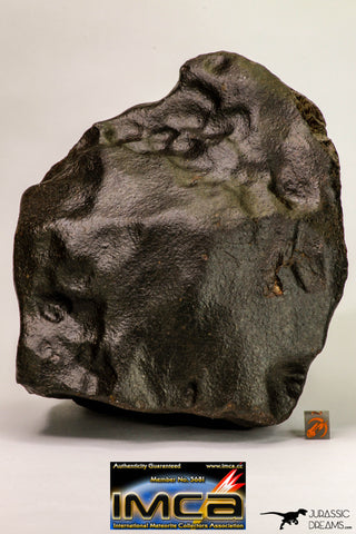 09098 - Complete Oriented NWA Unclassified Ordinary Chondrite Meteorite 4573 g With Fusion Crust