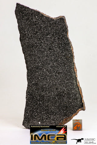 09099 -Top Rare Museum Grade NWA Polished Section of Enstatite Chondrite EL6  147.2 g