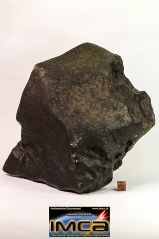09156 - Complete Oriented NWA Unclassified Ordinary Chondrite Meteorite 5050 g With Fusion Crust