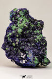 09166 - Beautiful 4.24 Inch Azurite Cristals + Malachite Cristals - Alnif (South Morocco)